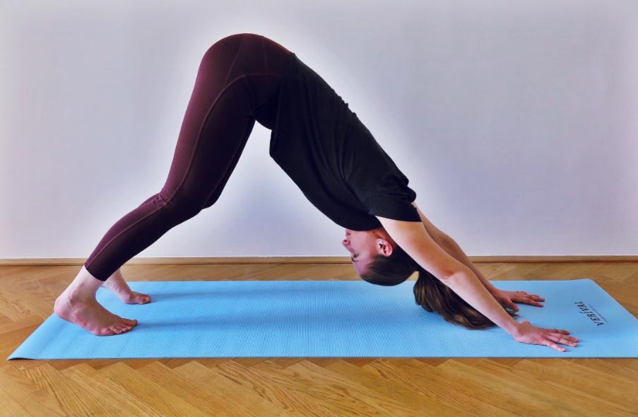 Guten Morgen Mit Yoga Der Herabschauende Hund Verival Blog