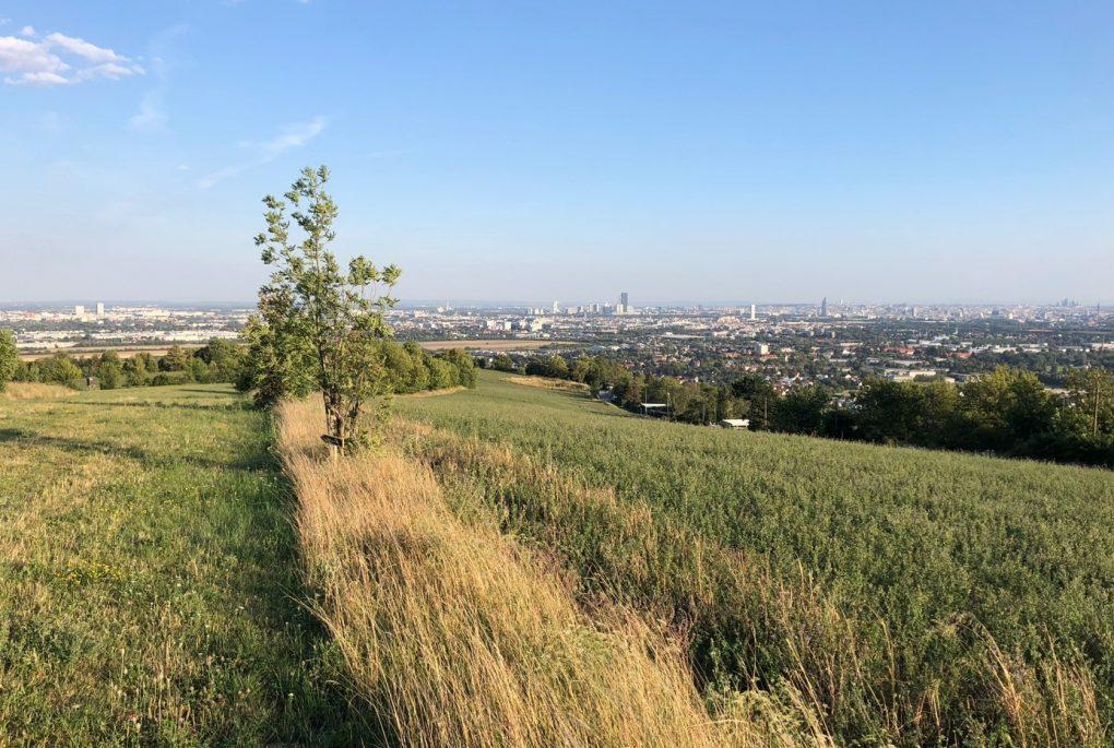 Guten Morgen Aus Wien 20 Verival Blog