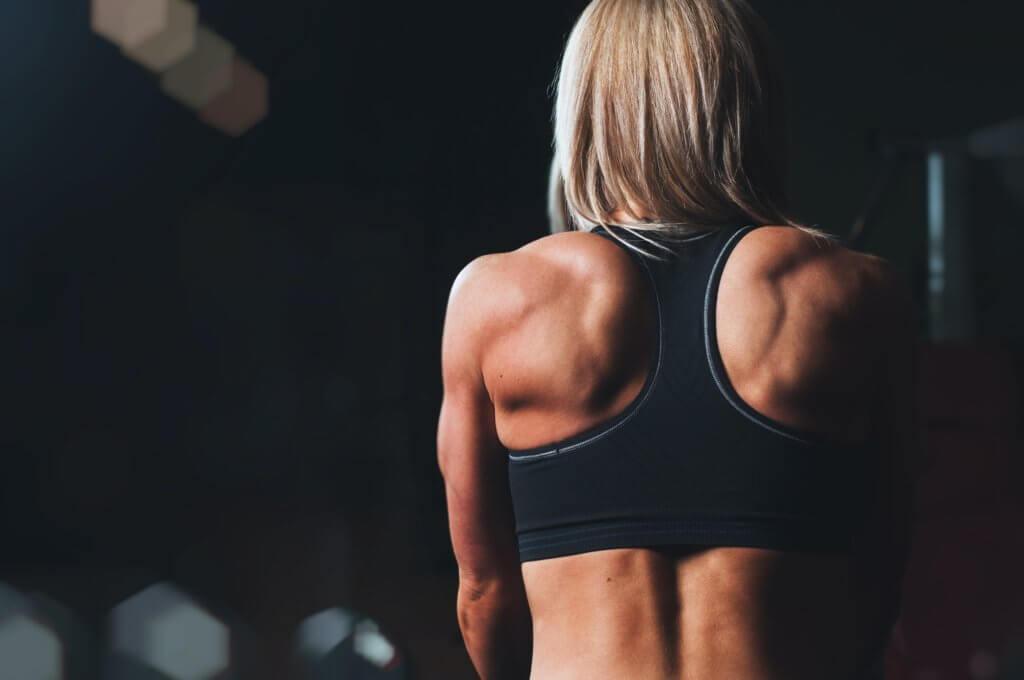 Kraftsport Übergewicht