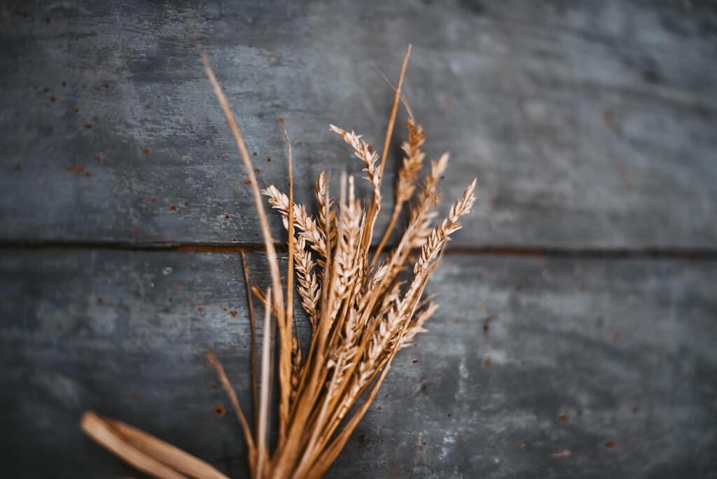 Grundnahrungsmittel Weizen