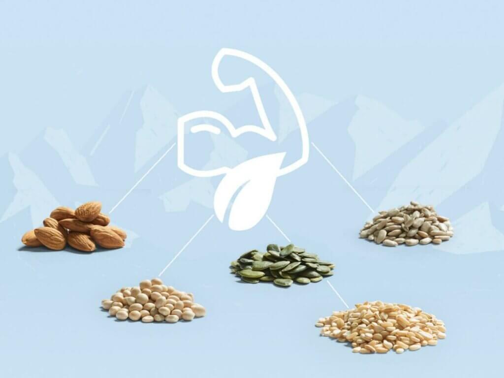 Le noci e i legumi forniscono proteine al corpo e aiutano a costruire i muscoli
