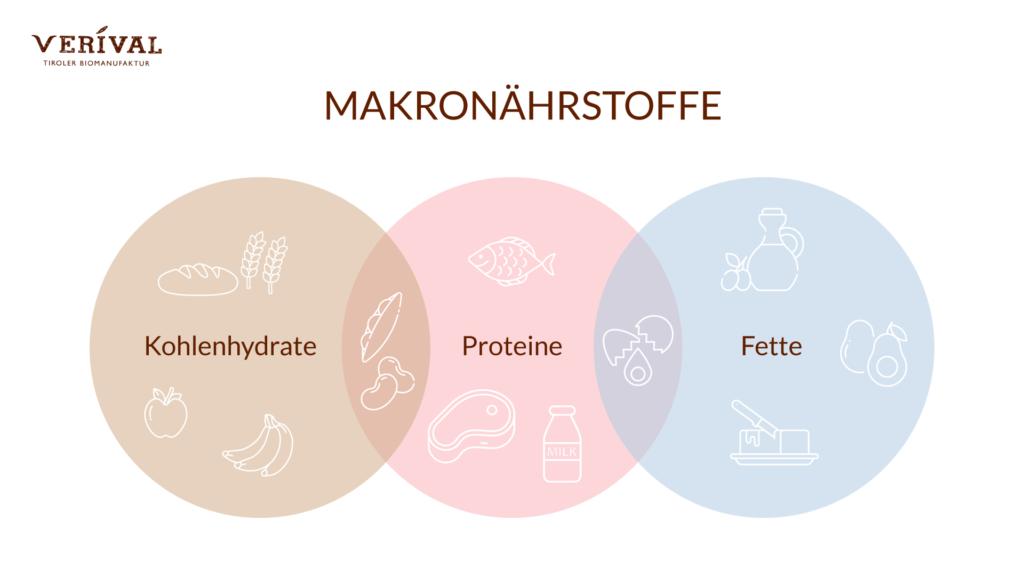 Welche Makronährstoffe gibt es? Kohlenhydrate, Fette, Proteine