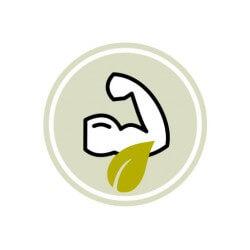Fonte di proteine